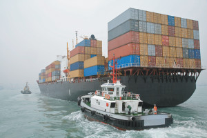 A typical shipping vessel carrying chickens to china